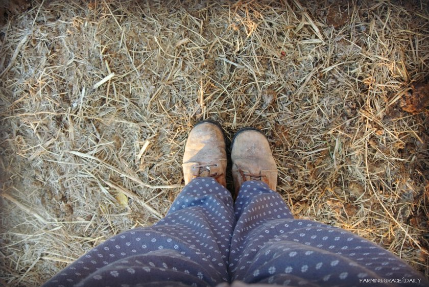 boots farm life