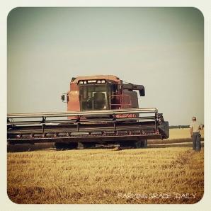 combine farmer wheat