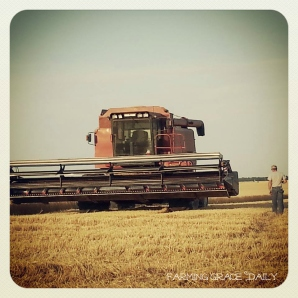 combine farmer wheat