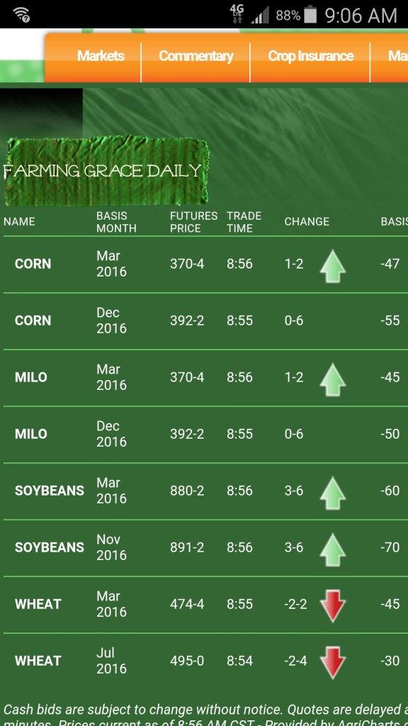 Markets Grain
