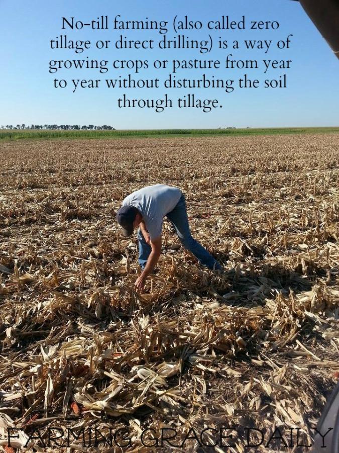 no till farming