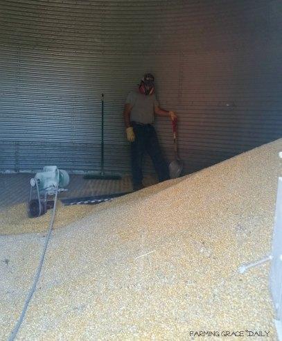 Corn bin farmer2016