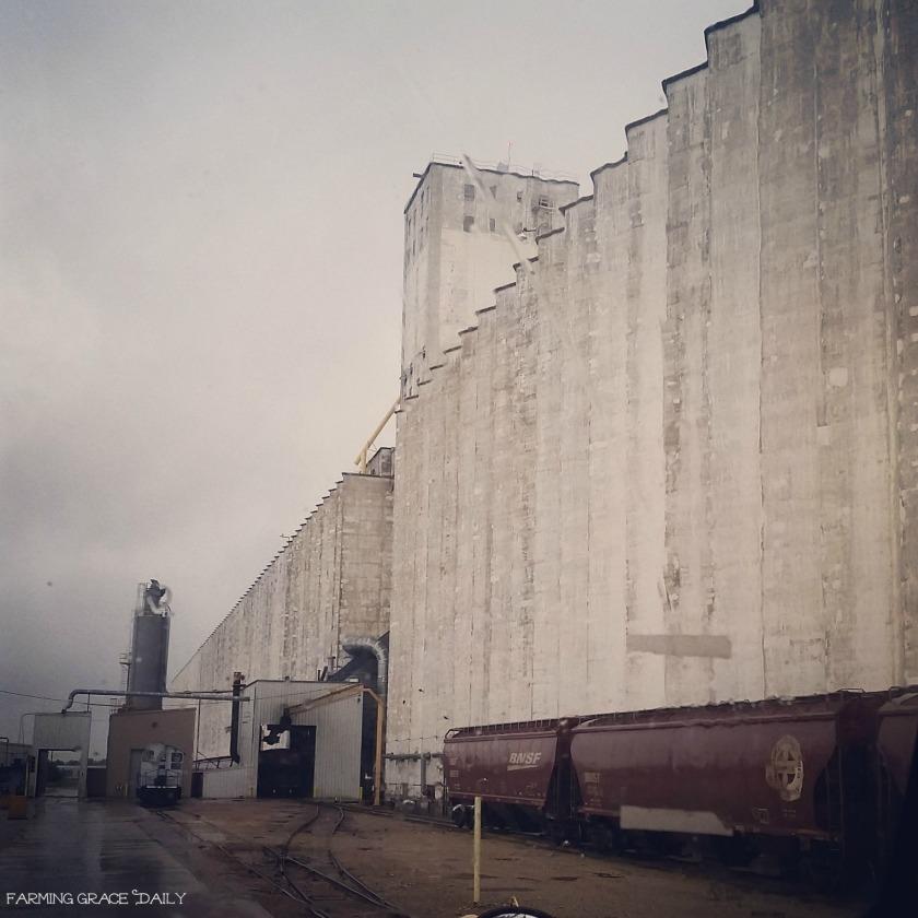 ELEvator grain farmer