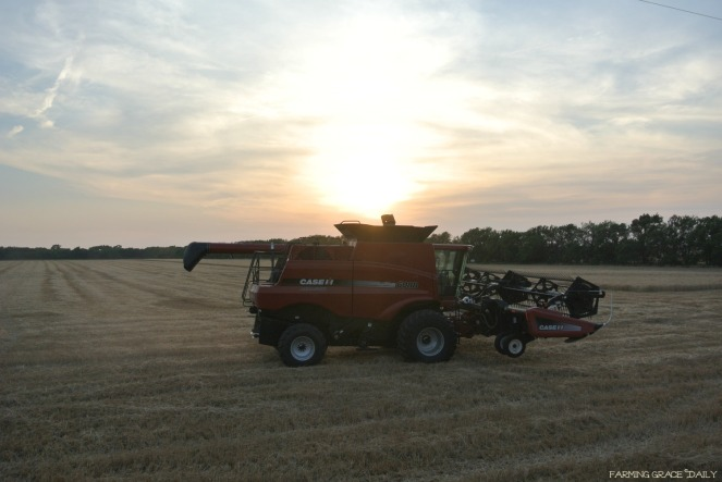 Case Ih combine sunset