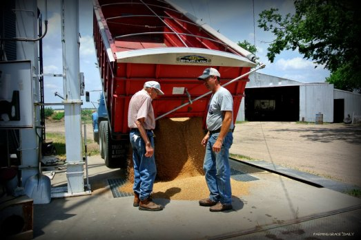 Generational Farming reduced