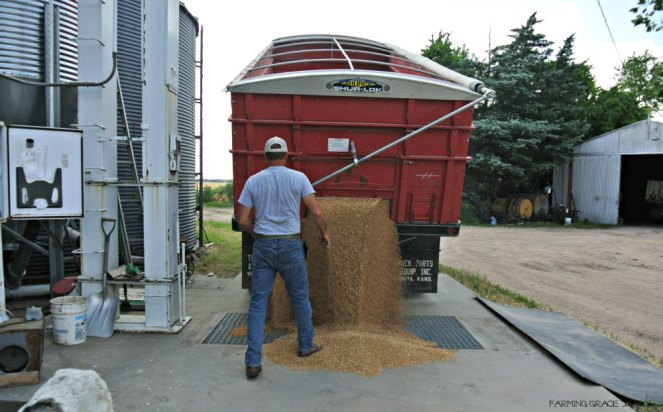 unloading wheat reduced