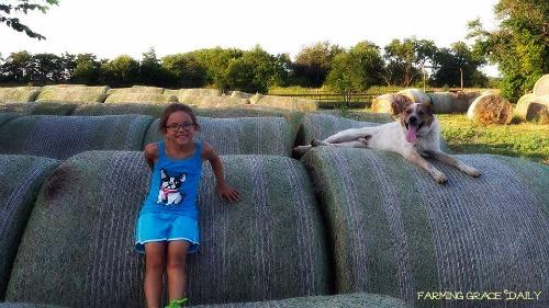 farmdog farm kid