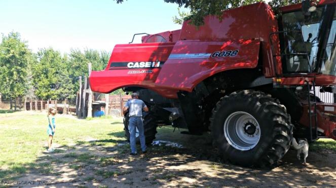case Ih 6088 combine corn harvest