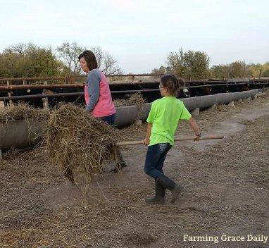 farm mom daughter cattle 2017