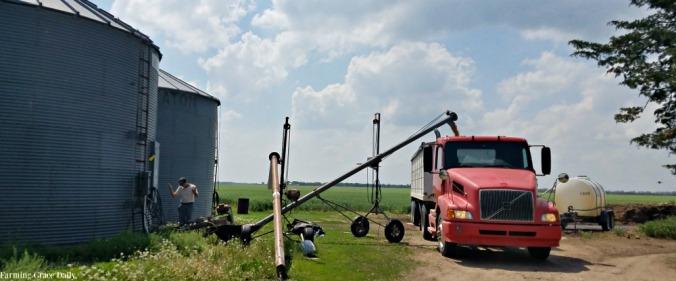 wheat kansas grain elevator