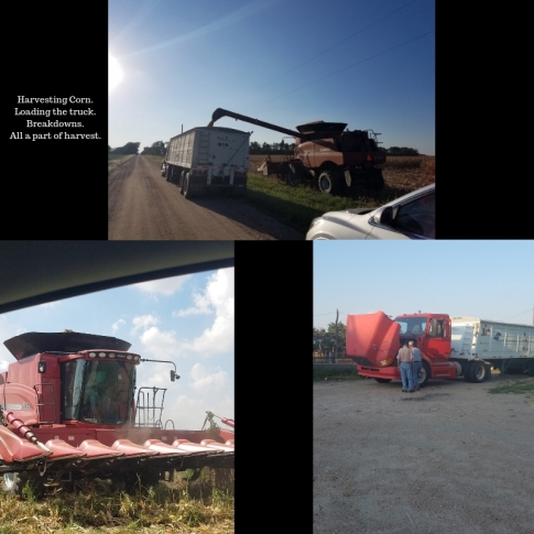 Harvesting Corn.Loading the truck.Breakdowns. All a part of harvest.
