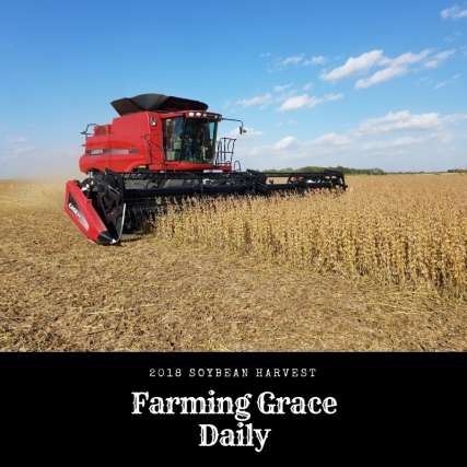 Farming Grace Daily (2)
